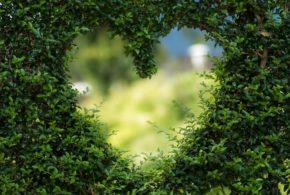 Jaro je tu, hledejte lásku!